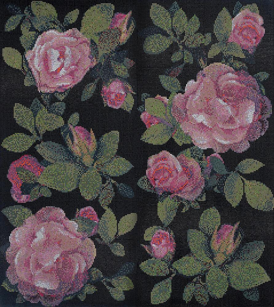 Springrose Nero
